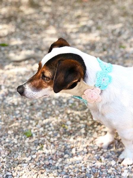 Collier pour chien en crochet CASSE ROSE FLEUR