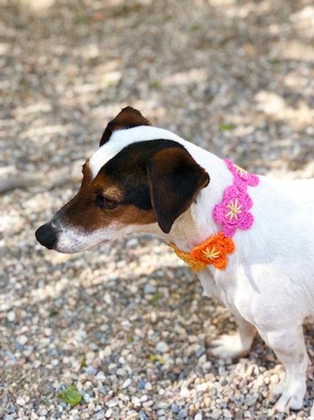 Collier pour chien en crochet ORANGE JAUNE GALET