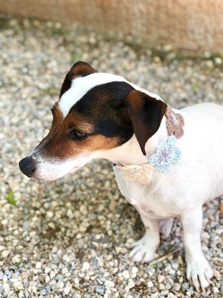 Collier pour chien en crochet GRIS BLEU FLEUR