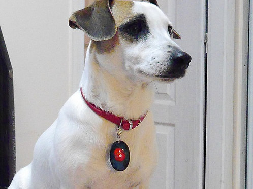 Les Tinou-Charms, médaille pour chien ou chat. Tinou Charms5
