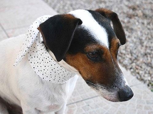 Le Foulard Pour Chiens. Le Tinou-foulard Laroque