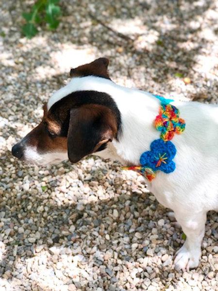 Collier pour chien en crochet BLEU HORIZON FLEUR