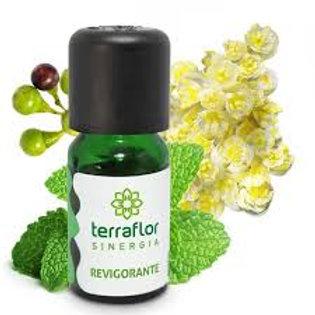 Sinergia Revigorante (sinergia de óleos essenciais) 10 ml - Terra Flor