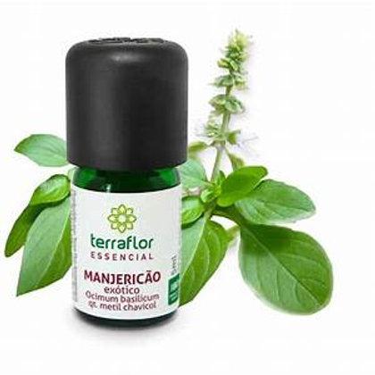 Óleo Essencial de Manjericão Exótico qt. metil chavicol 5 ml - Terra Flor