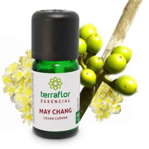 Óleo Essencial de May Chang Litsea Cubeba 10ml – Terra Flor