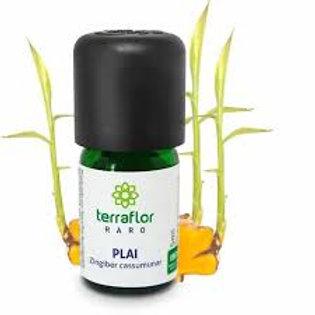 Óleo Essencial Plai 5 ml - Terra Flor