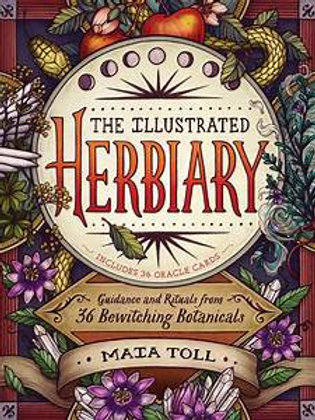 """Livro """"The Illustrated Herbiary"""" - Maia Toll"""