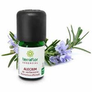 Óleo Essencial de Alecrim qt. verbenona 5 ml - Terra Flor