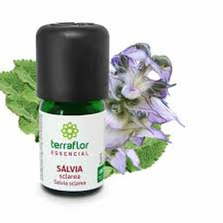 Óleo Essencial  de Sálvia Esclareia 10ml – Terra Flor