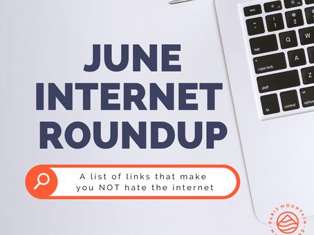 June Internet Roundup: Year half empty or year half full?