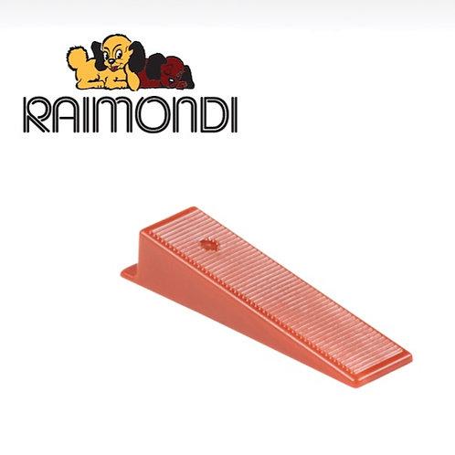 Raimondi Cuneo R.L.S.