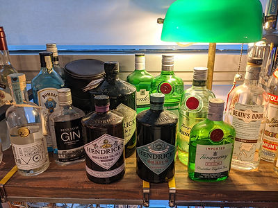 gin bottles.jpg