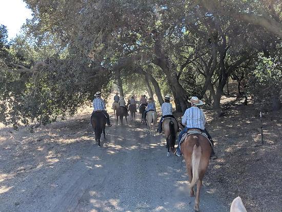 Riders in Oaks.jpg
