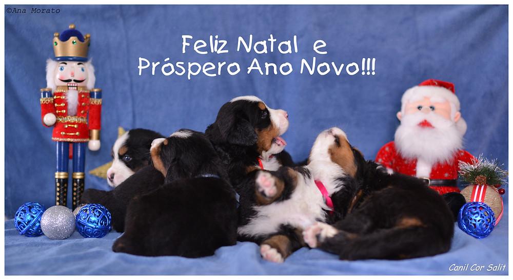 cartão_natal_2.jpg
