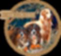 Logo do Canil Cor Salit criador das raças Bernese Mountain Dog e Golden Retriever