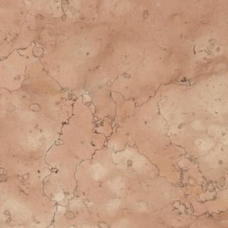 rosa-perlino.jpg