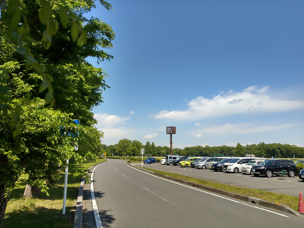 Akigase Park to indoor driving course - English Driving School