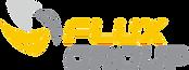 FluxValvision.png