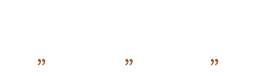 quote_2-01.png