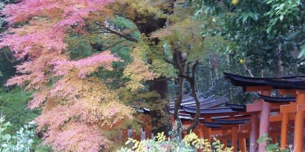 CANCELLED Hirakata, Japan | Pathos Piano Quartet
