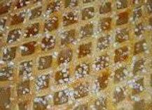 Apfelgitterkuchen - Blechkuchen