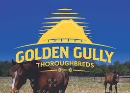 golden gully logo.jpg