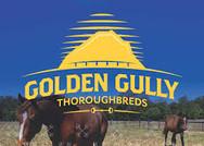golden gully logo.jpg