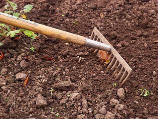 Jardineiros, não mercenários!