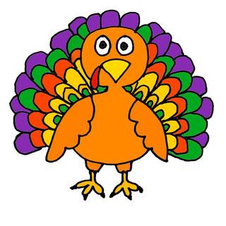 turkey feathers.JPG