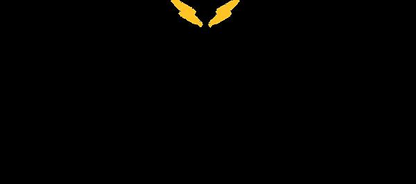 Origional Logo Blackburn.png