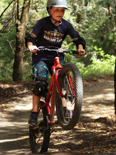 BMX wheelie.jpg