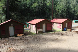 Cabin roofs.JPG