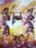 IMG_20200111_124317.jpg