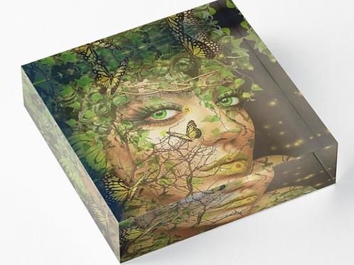 Elements Acrylic Block