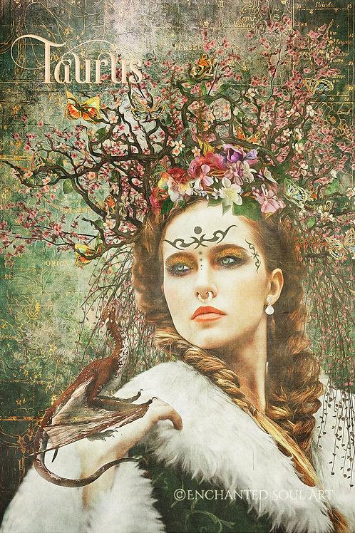 Horoscope Women - Taurus  Download
