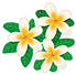 flower_plumeria.png