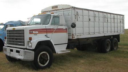deuchar 79 chev bruin truck.jpg
