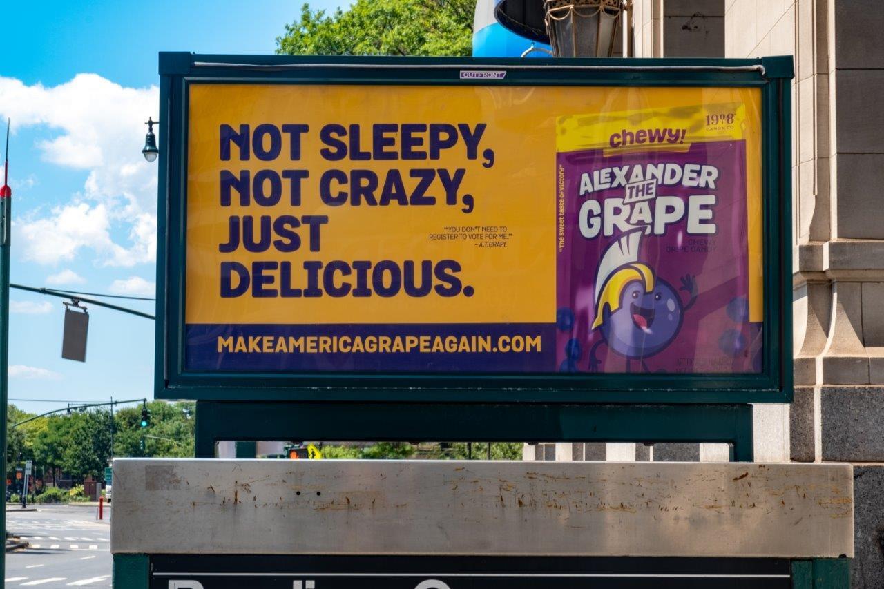 Alexander the Grape_NY Urban Panel (19).