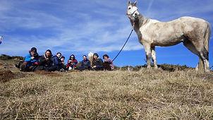 2021-02 - Ariège - Pôle Equestre -  (86)