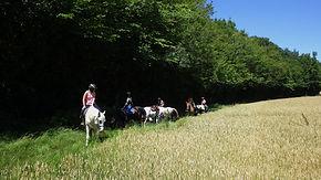 Carolehuit, ranch du bel air, randonnée équestre, lot et garonne