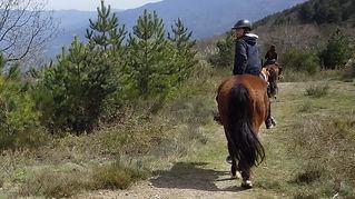 Junts, Vallespir, Pyrénées, orientales, cheval, chevaux, randonnées, Equestres, Arles, Tech, Amandine, Aineto, promenade, poney, Canigou