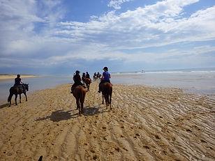 Randonnée équestre, Mimizan, Centre équestre Marina, Landes, plage