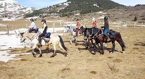 2021-02 - Ariège - Pôle Equestre -  (51)