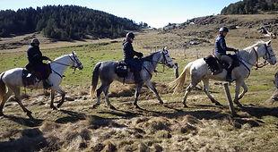 2021-02 - Ariège - Pôle Equestre -  (20)