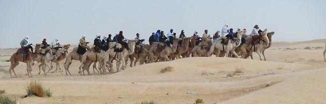 Tunisie, Douz, sahara, désert, festival