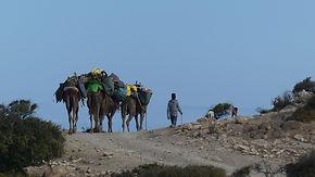 Marco, randonnée cotière, maritime, océan, maroc, sidi-kaouki, marche, droçmadaire