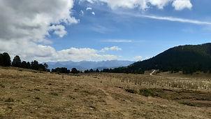 Ariège  Randonnée Anes Prades  Col de Gardie