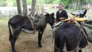 La Ferme aux ânes, ariège, Prades, Unac