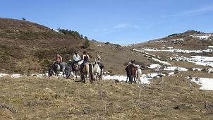 2021-02 - Ariège - Pôle Equestre -  (39)