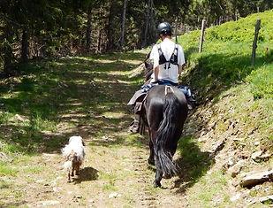 Merens, randonnée équestre, Ariège, cavalus, Govan Quinquis